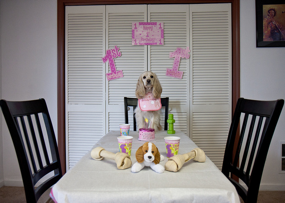1st Birthday 2009